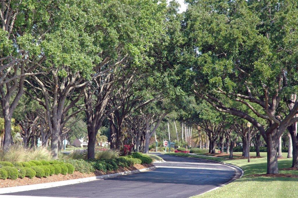 Sarasota Lawn Maintenance Company